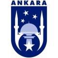 Ankara baca temizleme